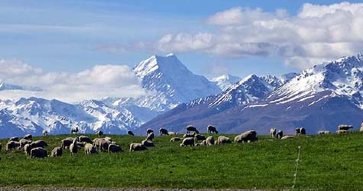 Best time to go to New Zealand? | Active Adventures