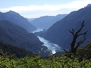 View of Doubtful Sound Cruise