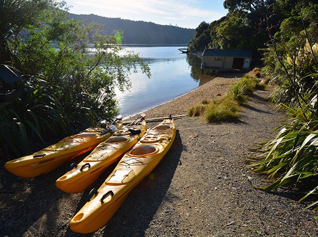 kayaks Marlborough Sounds
