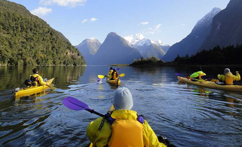 Group kayaking Milford Sound